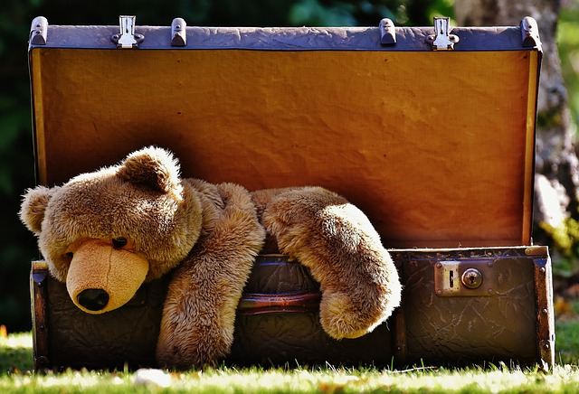 A teddy bear climbing out of an antique piece of luggage